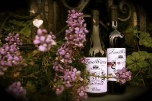 Two Wines Winery was founded in 2004 by master vintner Tony Rockefeller, with a singular goal: Quality and Distinction.